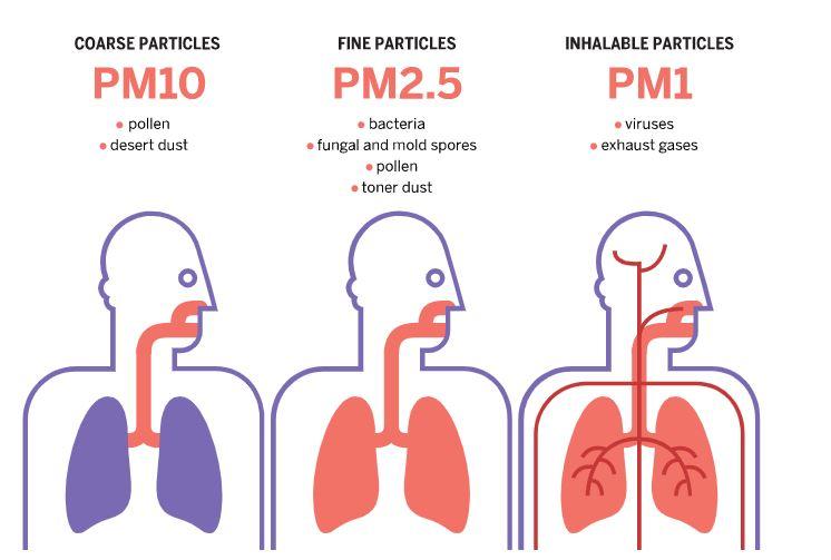 efecte particule pentru sanatate